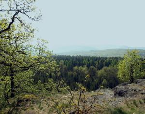 Großer und kleiner Wartberg (D010)
